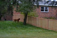 Security fencing in Merrill, WI