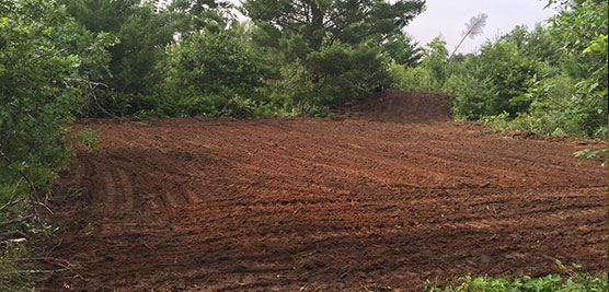 food plots, lined or unlined ponds and access trails