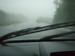 Auto Select's Guide to Windshield Wiper Replacement