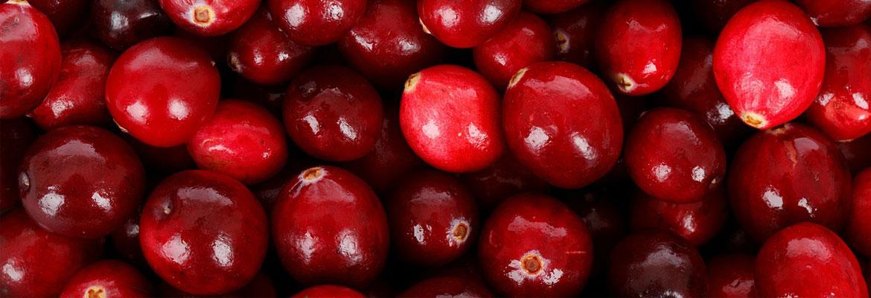 cranberries in Wausau, WI