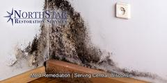 Professional Black Mold Remediation in Wisconsin Rapids, WI
