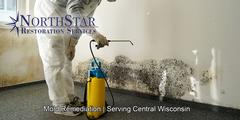 Mold Removal in Merrill, WI