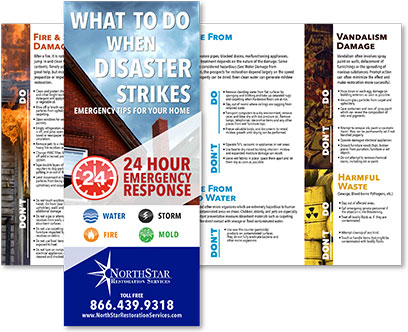 What to Do When Disaster Strikes Brochure