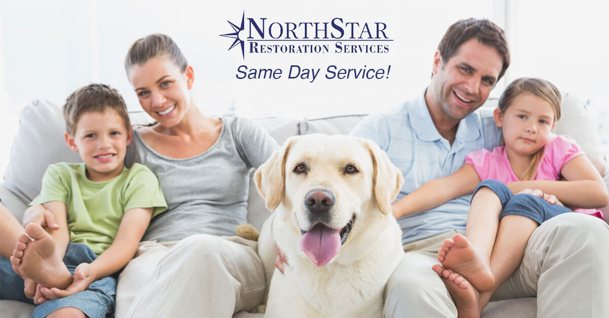 professional upholstery cleaning in Wisconsin Rapids, WI