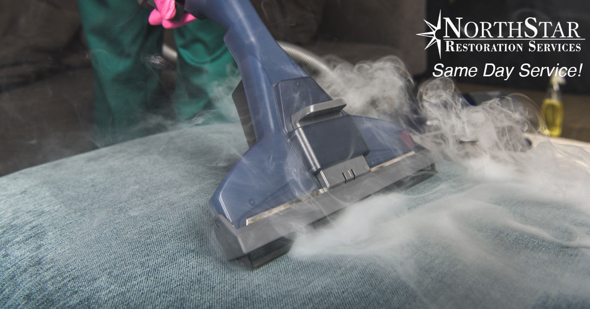 professional upholstery cleaning in Plover, WI